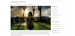 avien-wordpress-responsive-theme-slider3