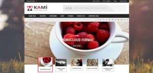 kami-drupal-responsive-theme-slider1