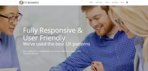 probusiness-joomla-responsive-theme-slider1
