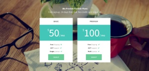 launch-wordpress-responsive-theme-slider2