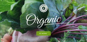 organic-html5-responsive-theme-slider1