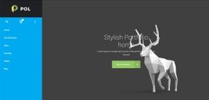 pol-wordpress-responsive-theme-slider1