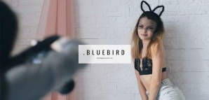 bluebird-wordpress-responsive-theme-slider1
