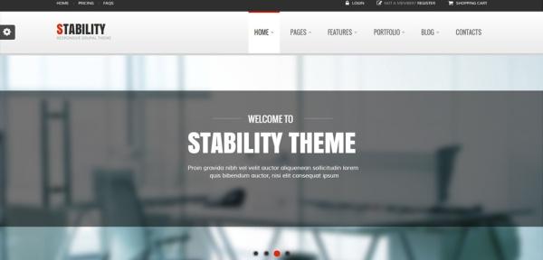 stability-drupal-responsive-theme-slider1