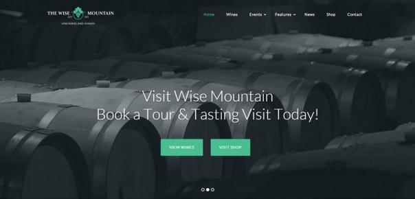 wise-mountain-wordpress-responsive-theme-slider1