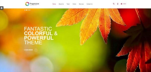 progressive-drupal-responsive-theme-slider1