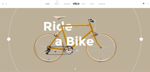 velo-wordpress-responsive-theme-slider1
