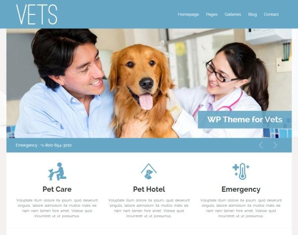 vets-wp-wordpress-responsive-theme-desktop-full